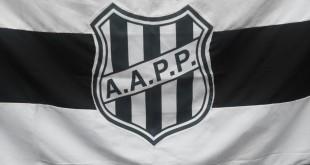 bandeira111